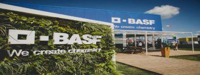 Basf 15 de julio 390x146 - BASF Digital Solutions ofrece empleo a más de 300 especialistas digitales en Madrid