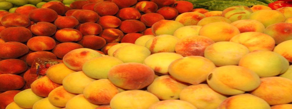 Empleo Campaña De Frutas En Cataluña Afrucat1