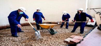 Empleo Construccion Obreros3 390x180 - Enviar Curriculum Vitae