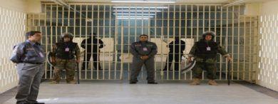 Empleo CuerpodeAyudantesdeInstitucionesPenitenciarias Funcionario3 390x146 - 900 empleos en Cuerpo de Ayudantes de Instituciones Penitenciarias