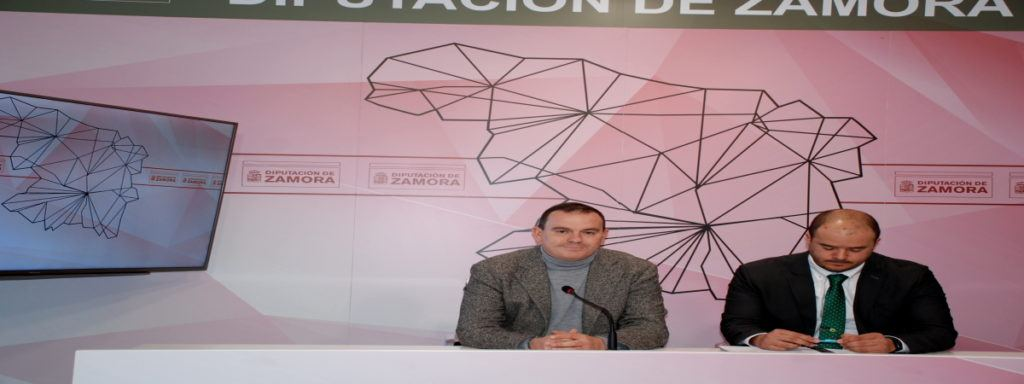 Empleo Diputación Zamora Directiva
