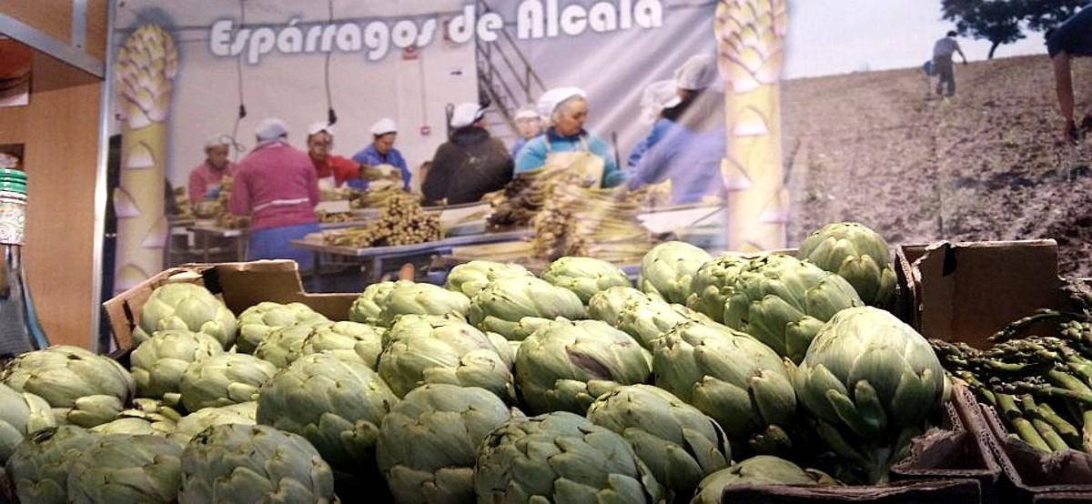 Empleo Esparragos Alcala Personal2 - Enviar curriculum espárragos Alcalá La Real