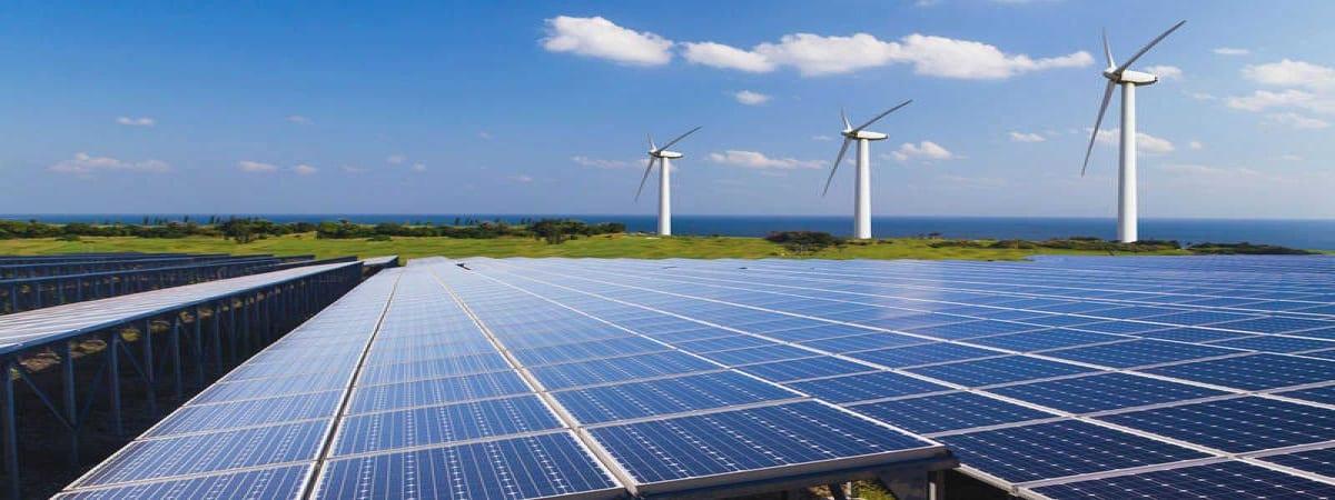 Empleo Planta Fotovoltaica heineken iberdrola exterior1 - 200 nuevos empleos en planta de Heineken en sociedad con Iberdrola
