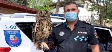 Empleo Policia Fuenlabrada