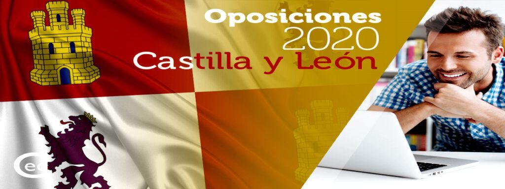 Empleo Profesor Castilla Y Leon