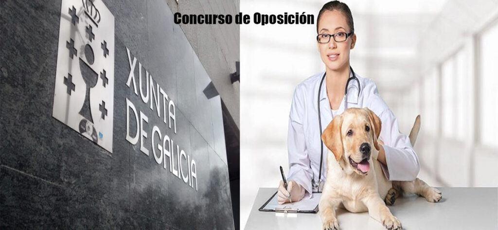 Empleo Xunta Galicia Veterinario