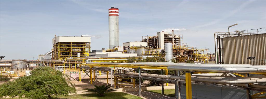 Empleo plantadebiomasa fachada 1024x384 - Ence ofrece 1.200 puestos de trabajo para su nueva planta de Biomasa en Huelva