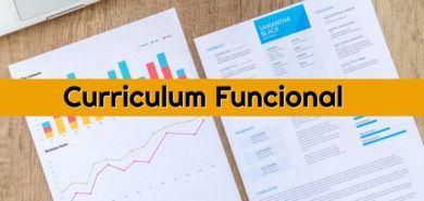 curriculum funcional 390x185 - Currículum cronológico