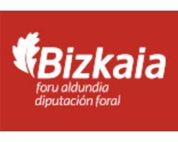 diputacion bizkaia - Enviar curriculum Junta de Castilla y León